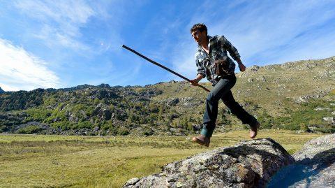Brice, un vacher à l'assaut des Pyrénées